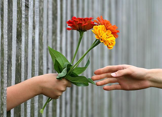 dłoń sięgająca po kwiaty
