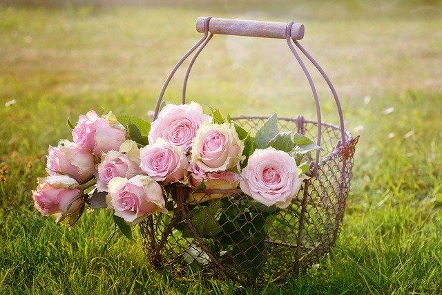 Podziękowania kwiaty róże