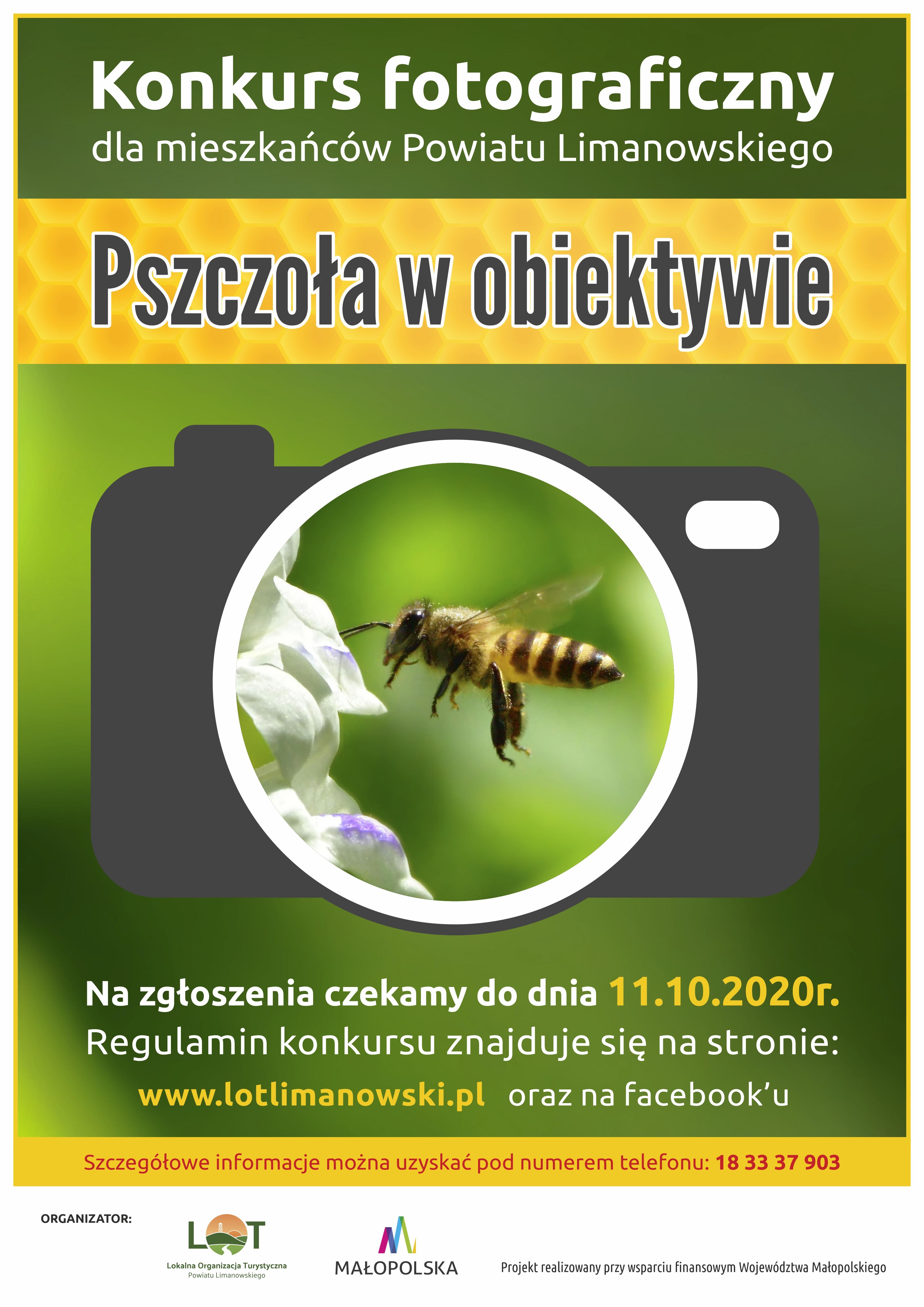 Plakat konkursu Pszczoła w obiektywie